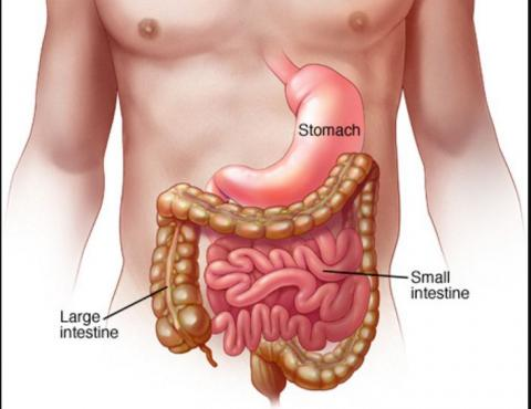 Symptoms and Causes of Gastritis